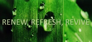 Refresh, Revive Spa Treatments