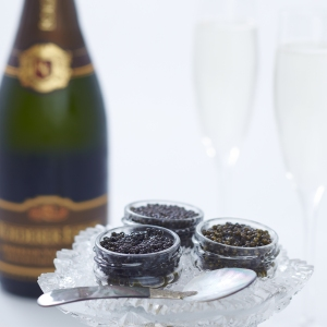 Champagne and Caviar Masters of Food and Wine Park Hyatt